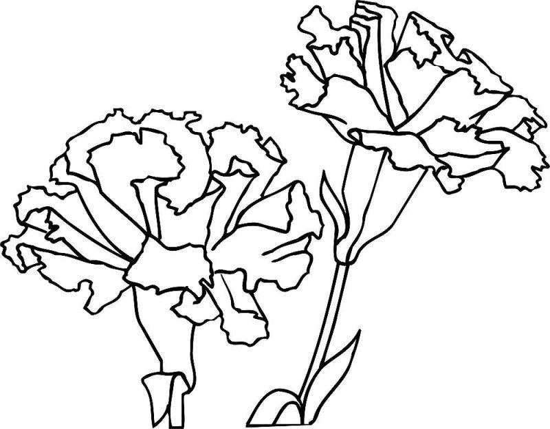 Бальные танцы картинка силуэт эмблема продукты оформляются