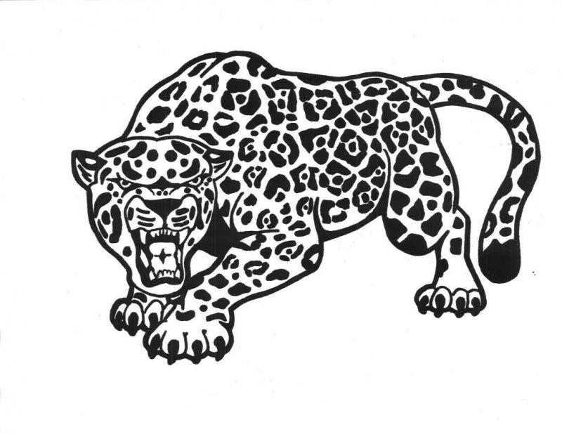 Раскраска леопарда и ягуара