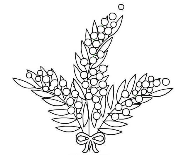 Картинка карандашом мимоза