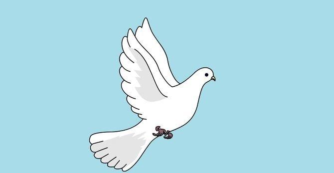 фото как нарисовать белого голубя стихи любви французском